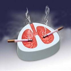 Пепельница кашляющая - суперзвук