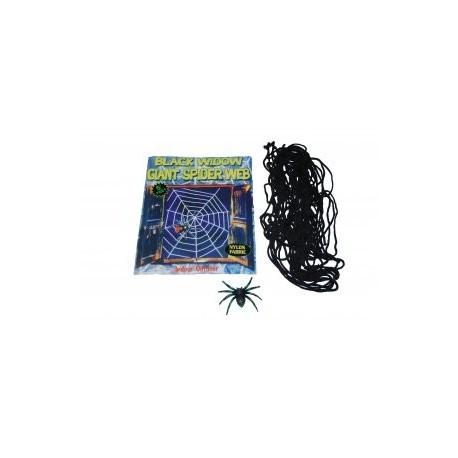 Паутина с пауком  фото 1 — Shutka