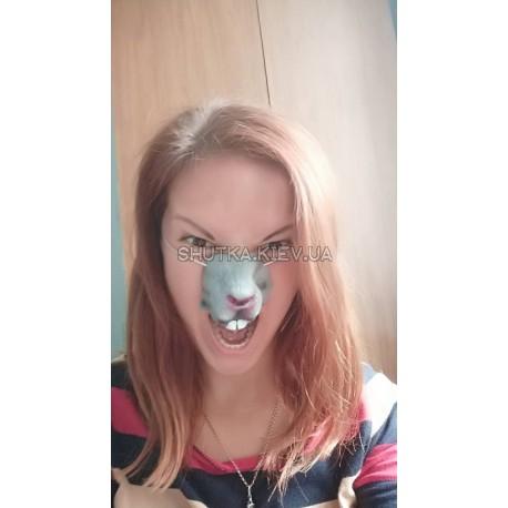 нос Кролика