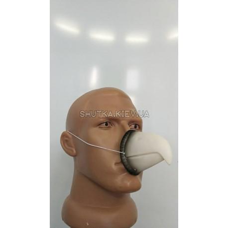Нос Пртицы (клюв)
