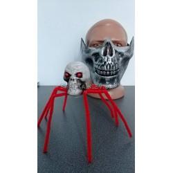 Паук череп