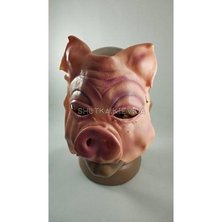 Полумаска свинья фото 1 — Shutka